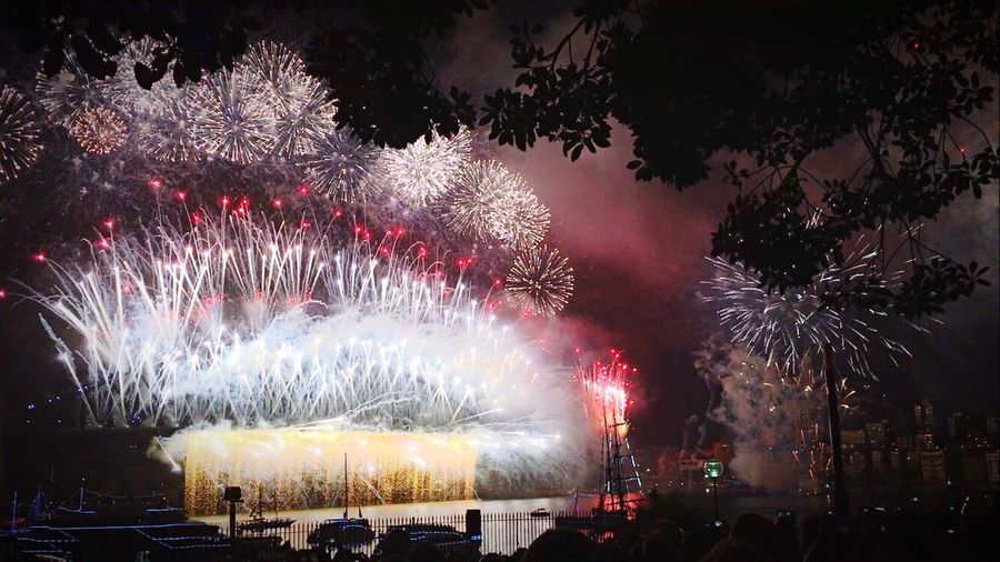 Just Fireworks. Sydney, Australia Royalbotanicgardens 2017 New Year Party Newwishes NewChances Exploding Celebration Night Harbour View Harbourhoppla Outdoors Sydney Opera House Get Impressed Workandtravel Clear Sky