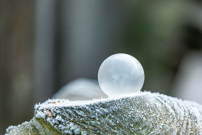 Close-up of frozen ball on snow