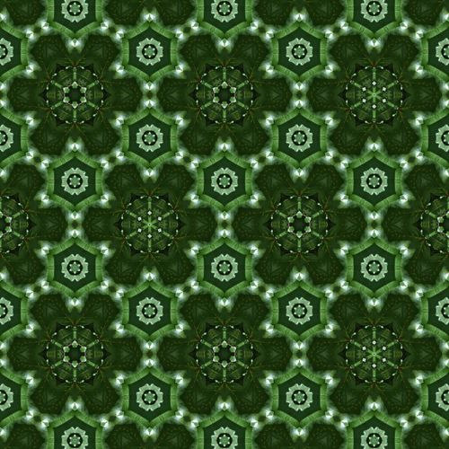 Backgrounds Full Frame Textured  Pattern Close-up Green Color LINE Seamless Pattern Architectural Design Prepared Food Diamond Shaped Architectural Detail Surface Pastry Hexagon Mosaic Marking Architecture And Art Architectural Feature Circular Repetition Crisscross Geometric Shape Triangle Tiny Detail Roadways