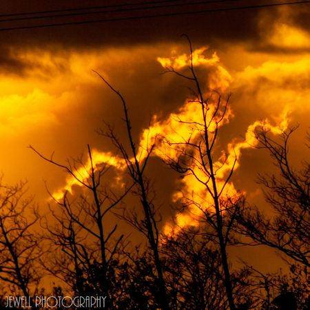 Oregon Coast Oregon Photography Canonphotography Northbend Bayarea Jewell Photography DSLR Photography Coos Bay