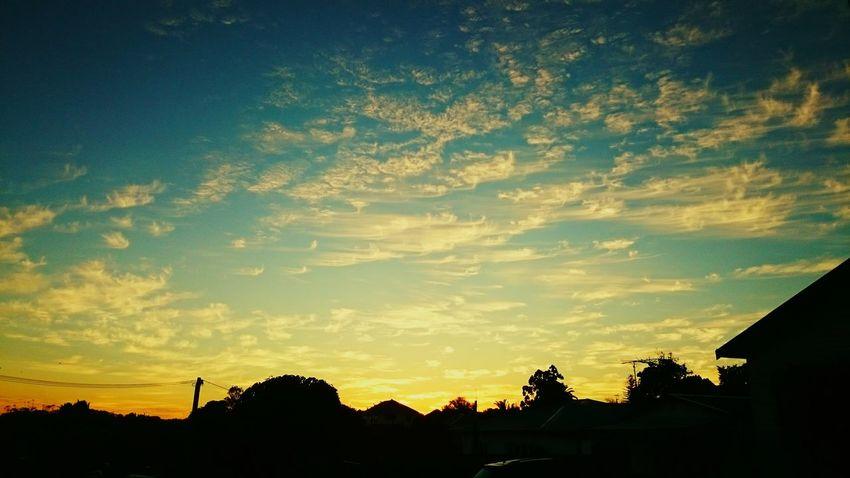 Sunrise Mount Albert Auckland Tamaki Makaurau Silhouette No People