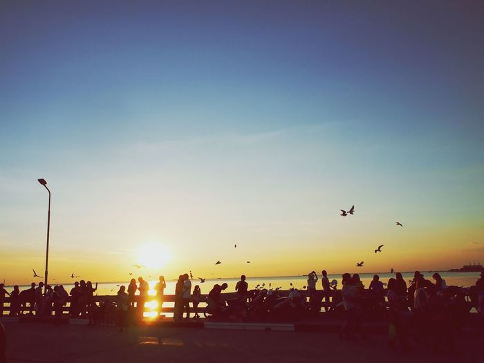 People on the bridge enjoying sunset moment Silhouette Evening Sky People Crowd Viewpoint Outdoor Sea Flock Of Birds