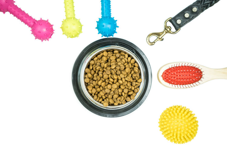 Dry food for pet and pet supplies on isolated white background Indoors  White Background Still Life Studio Shot No People Food And Drink High Angle View Food Close-up Cut Out Table Freshness Wellbeing Large Group Of Objects Healthy Eating Yellow Directly Above Red Variation Choice Dry Food Rubber Toys Brush
