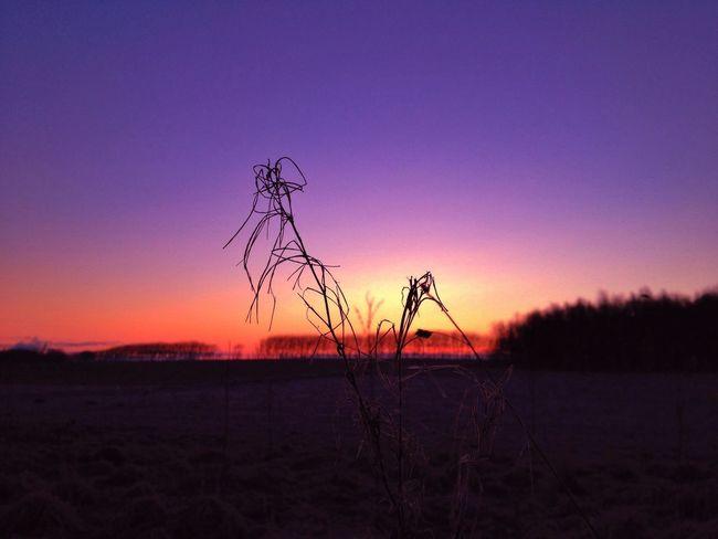 Tadaa Community Sun Rise Godthåb