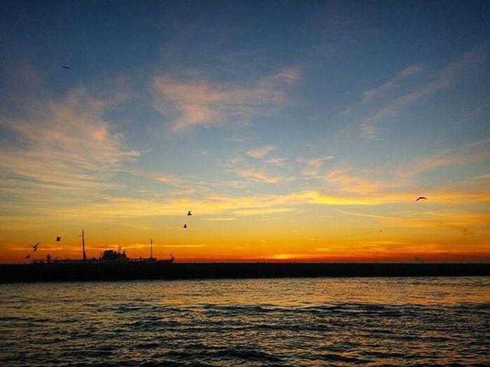 Kaptan olmak isterdim Aynanın karşısında Eski bir sinema yıldızıgibi ağlayan İstanbul`un hatlarında Bir fırça hafifliğiyle gidipgelen vapurlara......... -Sunay Akın - 📜✒ . Awesome_eartpix Discoverglobe Igtravellerworld Ig_fotograf_art Photo_turkey Gallery_of_all Nature Fotografemekcileri Sendeceksene Super_photosunsets Sunser_stream Best_sunset_capture 2s_sunsea Super_photosunsets Sunsetmax Igsilhouette Anılarınısakla World_mastershotz_sunsky Ig_photostudio Cokgezenlerklubu Vscokadraj Istanbulpage Ig_dynamic Gezitutkusu Sunsets fotograf gencgezginler objektifimden