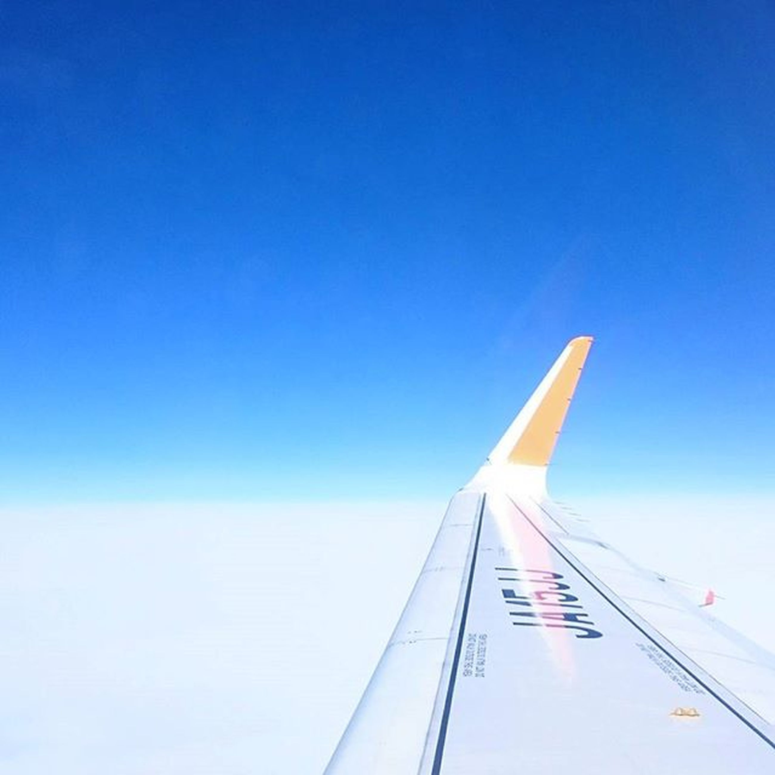 clear sky, blue, transportation, copy space, low angle view, part of, cropped, flying, air vehicle, airplane, travel, mode of transport, on the move, day, outdoors, sky, mid-air, white color, no people, motion