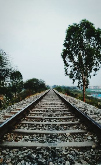 Railroad Track Rail Transportation Transportation Tree No People The Way Forward Cloud - Sky Day Outdoors Railroad Tie Sky Nature Landscape Straight Parallel Beauty In Nature Scenics Honor6x The Great Outdoors - 2017 EyeEm Awards The Street Photographer - 2017 EyeEm Awards The Architect - 2017 EyeEm Awards