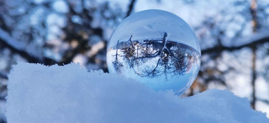 Close-up of snow covered with reflection of trees