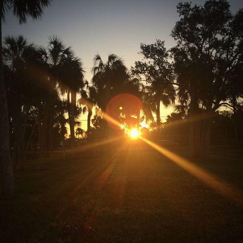 FL Sunrise ☀️ // Sunbeam Silhouette Beauty In Nature Scenics Sunrise Florida Nature Florida Skies What I Live For  Lens Flare