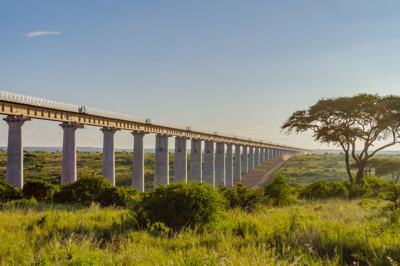 Plant Sky Bridge Connection Architecture Nature Built Structure Grass Tree Clear Sky Transportation Bridge - Man Made Structure No People Water Copy Space Land Day Growth Field Architectural Column Outdoors Railroad Track Rail Transportation Nairobi National Park Africa