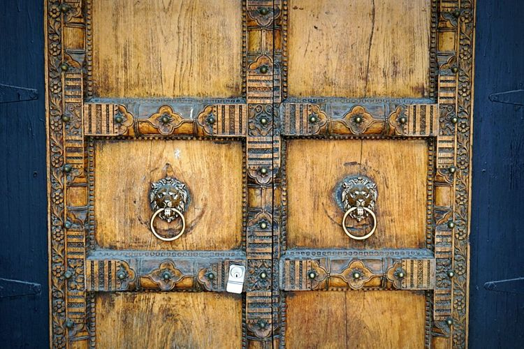 The lion the _____ & the wardrobe Door Doorway Doorknob Artistic Door Fancy Door Streetphotography Toronto Toronto Street Photography Wood Wood Detail Wood Door Lion