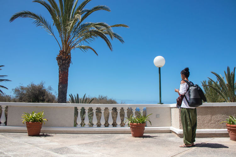 Man standing by palm trees against sky