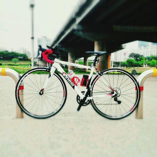 새 자전거 Epuegraphic