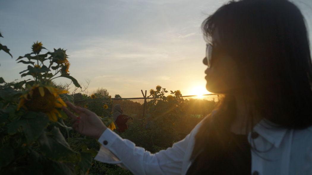 Exotic Field INDONESIA Ladang Bunga Matahari Panoramic Pantai Goa Cemara Silhouette Sunflower Tree Yogyakarta Beach Beauty In Nature Colorful Explorejogja Girlsdayout Kid Model Pose Motorbike Nature Outdoors Pantai Sky Sunglasses Sunset