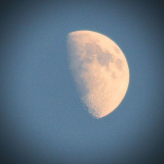 Moon Halfmoon PhotoByMuratGul