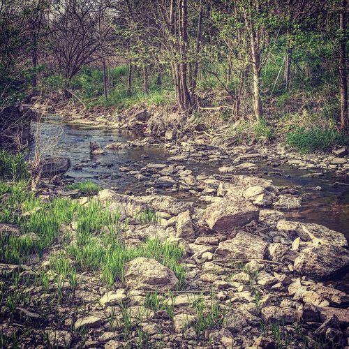 Beauty in Nature Nature Beauty In Nature Creek Outdoors Rocks Water Rocks And Water Kentucky  First Eyeem Photo Miles Away