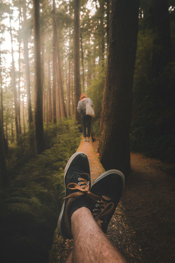 Hiking Forest New Pretty Dramatic Light Walking Wanderlust EyeEm Moody EyeEm Best Shots EyeEm Gallery Nature Orange Warm Tree Forest Standing Men Human Leg Shoe Pine Tree WoodLand Hiker Fall Foot Human Foot Personal Perspective Footpath Leg