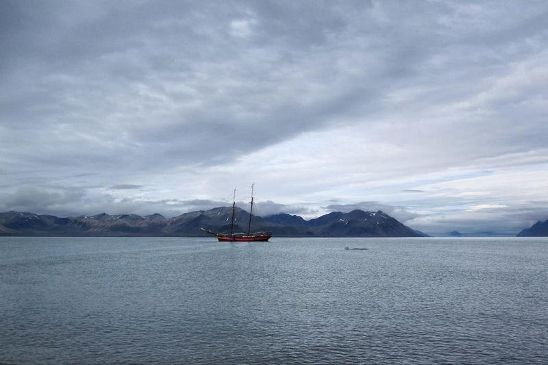 Sailing Ship at