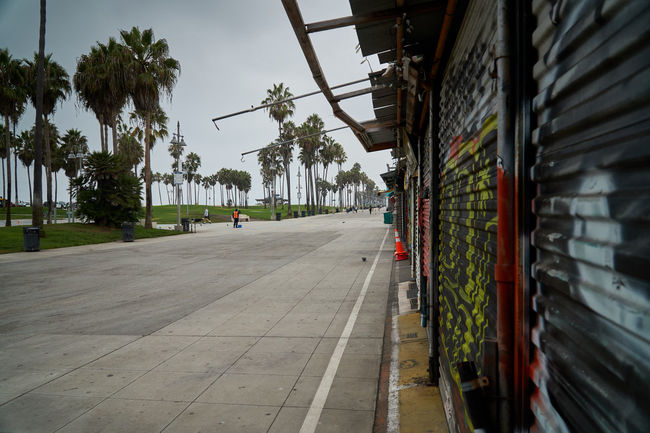 Graffiti wall at the boardwalk of venice beach Tree Architecture Plant Palm Tree Tropical Climate Street The Way Forward No People Building Exterior Outdoors Built Structure Graffiti Graffiti Wall Boardwalk Venice Beach Boardwalk Dirty