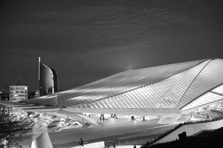 Santiago Calatrava Built Structure Blackandwhite Photography Best EyeEm Shot Eos550d Liège-Guillemins Railway Station Architectural Design Modern Tower And Clouds Liège By Night Liège-Guillemins At Night Eos 550d
