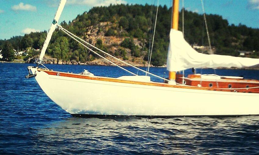 Summer Sailing Sailboat Water_collection