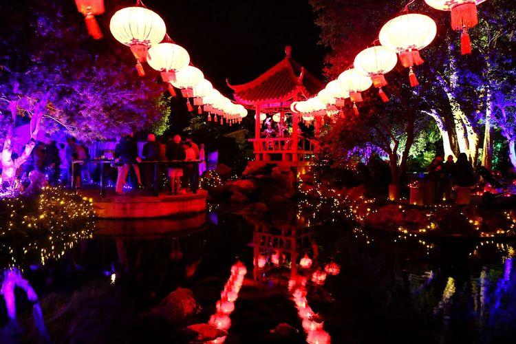 Illuminated lanterns at night