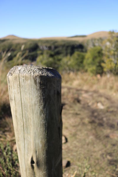Beauty In Nature Clear Sky Close-up Day Desert Field Focus On Foreground Grass Landscape Mountain Nature No People Outdoors Plant Scenics Sky Sunlight Tree Wooden Post