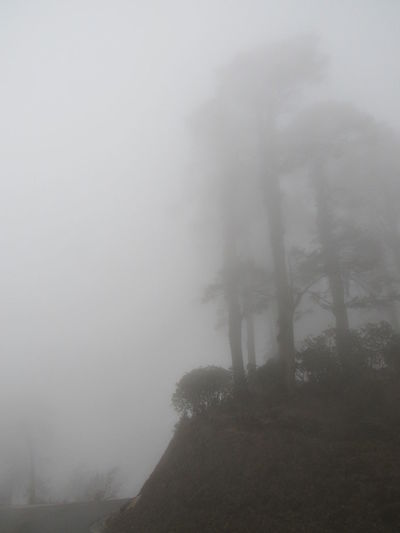 EyeEmNewHere Bhutan Nature DochulaPass Cold Fog Smog Weather