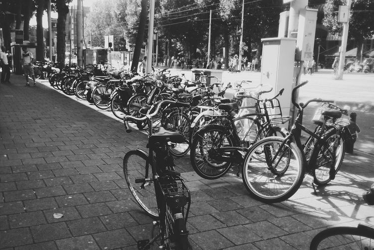 Amsterdam Amsterdamcity Holland The Netherlands Netherlands2014 Bnw Bike Bicycles