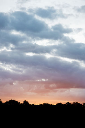 Beauty In Nature Cloud - Sky Day Nature No People Outdoors Scenics Silhouette Sky Sunset Tranquil Scene Tranquility Tree