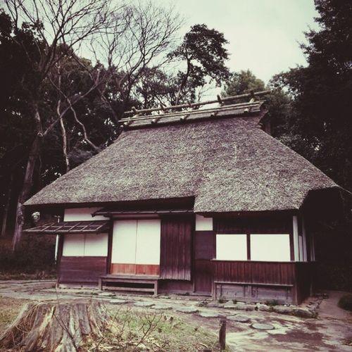古民家 茅葺き屋根 Japan 日本