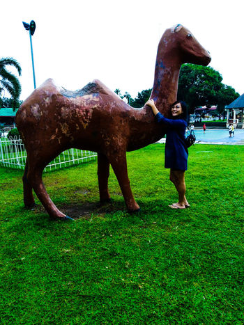 Tree Elephant Full Length Horse Sky Grass