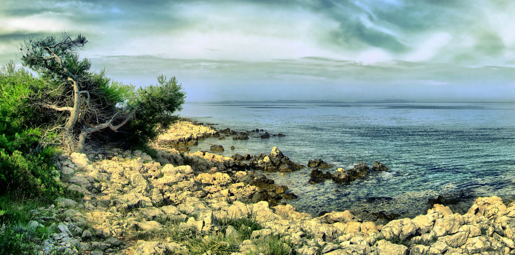 Island Robinson Island Robinson Sashalmi HDR Hdr_Collection Hdr_Collection Hdrphotography Panorama Sky Sea Sea And Sky Seaside Summer EyeEm Nature Lover EyeEm Gallery EyeEm Nature Lover Eye4photography  HDR Collection UnderSea Water Sea Beach Sand Wave Sunlight Underwater Galaxy Sky Seaweed