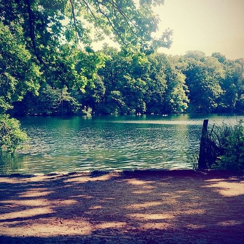 Perfectday Summersun Hclf