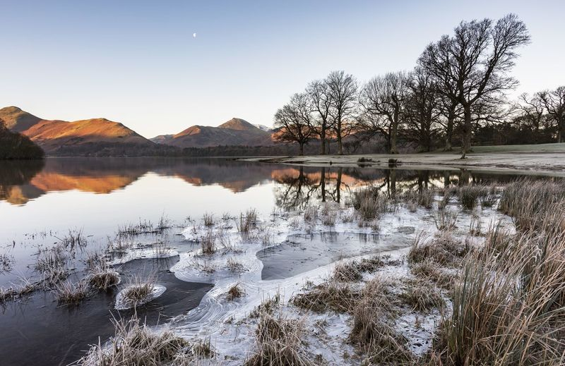 Frost Frozen Ice Lake District Weather Arctic Blast Beauty In Nature Cold Day Grass Lake Landscape Nature No People Outdoors Reflection Scenics Shore Sky Still Life Tranquil Scene Tranquility Tree Water Winter