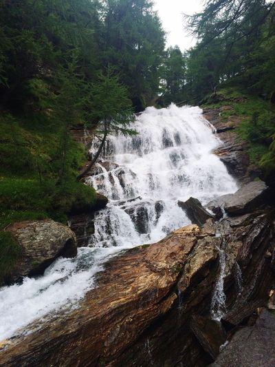 Water Waterfall White Parco Veglia Devero Alpe Veglia Nature Nature_collection Walking Around Bosco