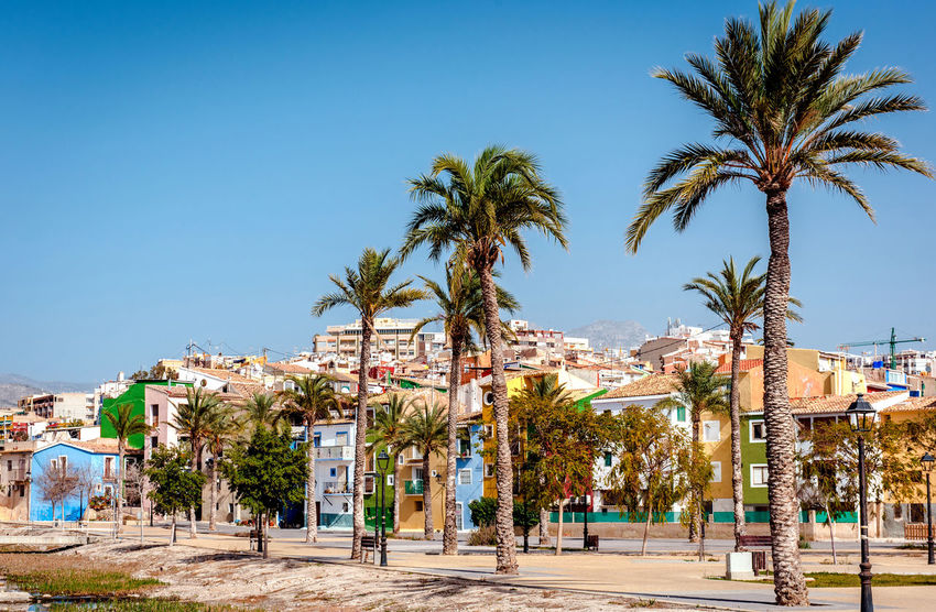 Multicolored town of Villajoyosa / La Vila Joiosa. Coastal town of Costa Blanca. Province of Alicante, Valencian Community, Spain Alicante, Spain Bench Blue Sky Colorful Costa Blanca Famous Place Houses La Vila Joiosa Landscape Lanterns Multi Colored Palm Trees Picturesque Village Residential Building Scenery South SPAIN Street Sunny Day Tourist Resort Town Travel Destinations Tropical Climate Typical Houses Villajoyosa
