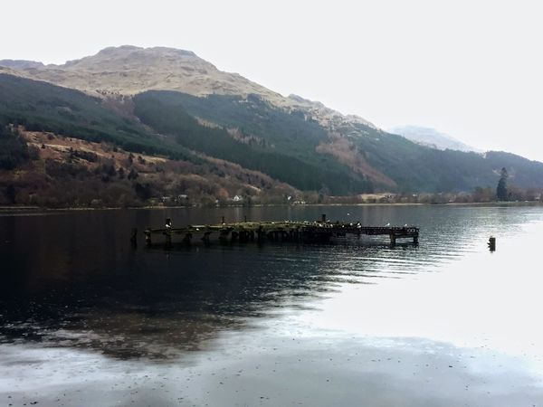 Beauty In Nature Beauty On My Doorstep Day Dull But Beautiful Growth Landscapes Loch  Mountain Range Nature Outdoors Reflection Trees VisitScotland Water Birds Non-urban Scene No People Scotland