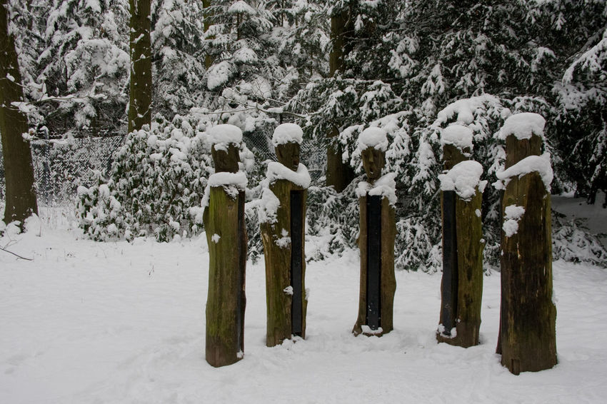 Man Beauty In Nature Cold Temperature Day Landscape Nature No People Outdoors Scenics Sculpture Snow Snowing Tranquility Tree Weather Winter