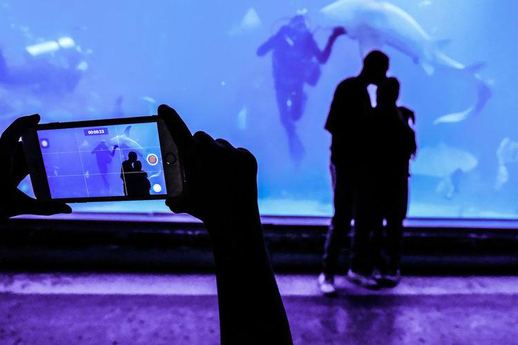 Silhouette people photographing in aquarium