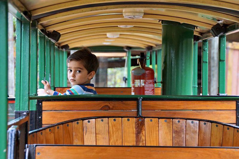 Portrait of boy sitting on seat in train