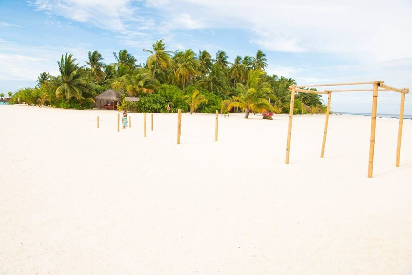 Paradise Paradise On Earth Wedding Ceremony Wedding Maldives Resorts Sand Beachlife Beach Photography Beach Maldive Maldives EyeEm Selects Plant Sky Land Beach Tree Nature Tranquil Scene Tropical Climate Sand Tranquility Palm Tree