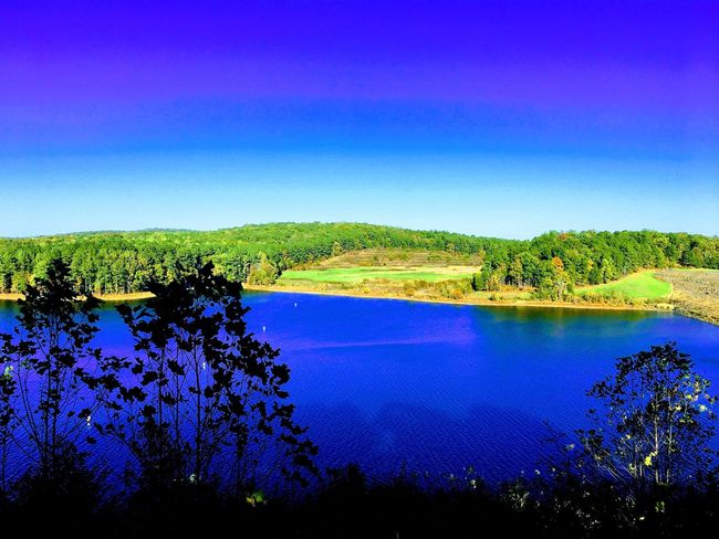 View over Lake Jordan Blue Tranquil Scene Scenics Beauty In Nature Tree Nature Tranquility Lake Water No People Landscape Outdoors Sky Green Color Clear Sky Growth Day Rural Scene
