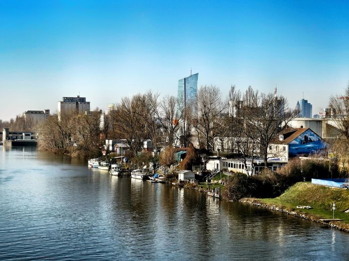 Kleines Idyll in der Großstadt Little Idyll Riverbank Riverscape Boats And Water Main River Frankfurt Am Main Germany🇩🇪 cityscapes Skyline Frankfurt EZB Frankfurt City Life Blue Sky Cold Temperature Winter Day Water Wet Sky Cloud - Sky Outdoors Day Nature