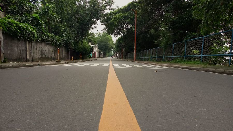 Right down the middle. Down The Middle Split Street Roads Moving Forward  Forward Thinking Long Way Tree Road Sky Empty Road The Way Forward Double Yellow Line Road Marking Asphalt vanishing point Bicycle Lane Treelined Mountain Road