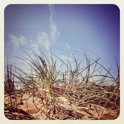 #wind #sky #grass #sand #beach ?Lovely day in Malahide Beach Sky Grass Wind Sand Popular Popularpage Alaniskoeblove Alaniskopop