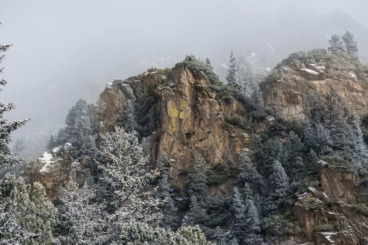 colorful mountain peak Rock Tatry Cliff Close-up Cold Temperature Composite Dramatic Environment Fog Forest Hill Landscape Mountain Mountain Peak Nature Orange Color Peak Plant Rock Rock - Object Slope Tranquility Travel Destinations Tree Winter