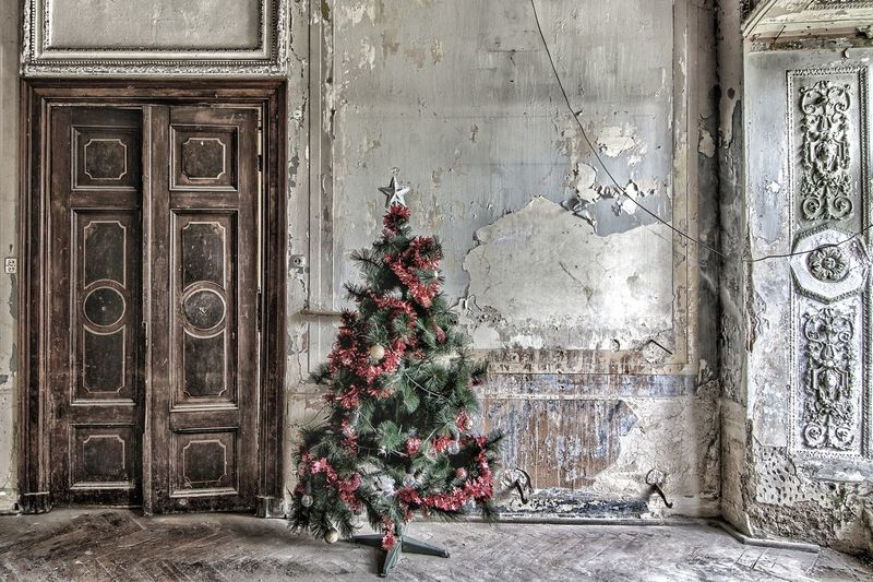 Christmas Greetings! 🎄 With many good wishes for Christmas and the coming year. 🙏🏼😊🙋🏻‍♂️ Urbex Urban Christmas Decoration Love Peace Wishes Santa Christmastime Christmas Time Christmastree Tree Urban Exploration Lost Place Lost Lostplaces Photography EyeEm Best Shots EyeEmNewHere EyeEm Gallery First Eyeem Photo Verlassene Orte Abandoned Places EyeEmBestPics Ballroom Full Frame Architecture Close-up Building Exterior Built Structure Christmas