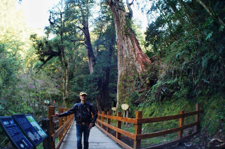 臺灣 Tree One Person Real People Standing Full Length Railing Lifestyles Day Growth Nature Leisure Activity Men Outdoors Women Adults Only Young Adult Sky People Adult Taiwan 恩愛農場