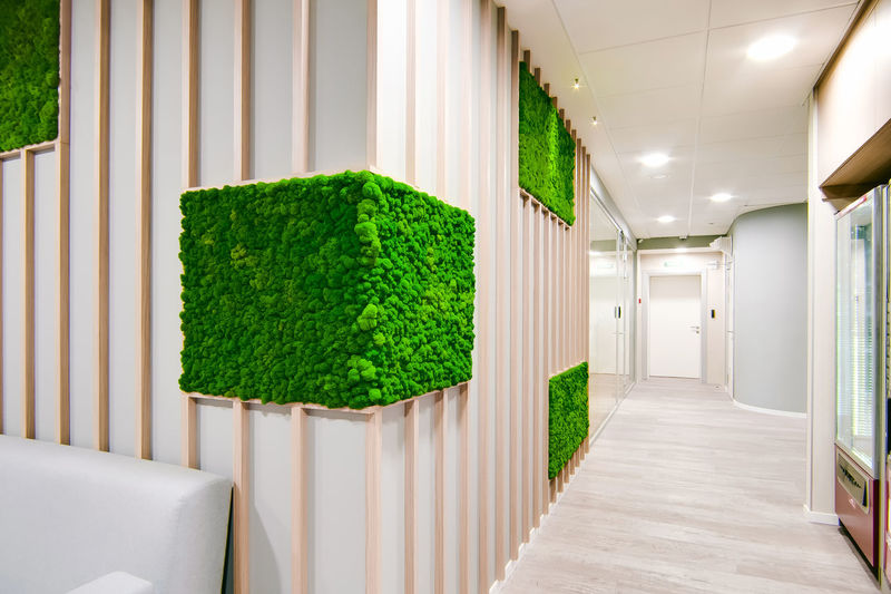 Arcade Architecture Building Built Structure Ceiling Corridor Day Green Color Growth Hedge Indoors  Lighting Equipment Modern Nature No People Plant Seat Tree Window Wood - Material